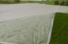 Rayson 不織布、 ruixin 、エンバイロバナナ透過性のためのよい価格で雑草防除ファブリック屋外-3