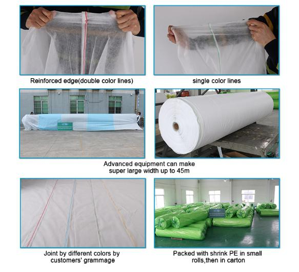 Rayson 不織布、 ruixin 、エンバイロバナナ透過性のためのよい価格で雑草防除ファブリック屋外-6