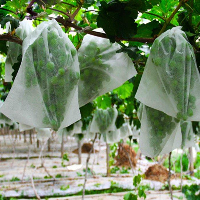 चीन में बने 100% पीपी सांस गीला नॉनवॉवेन कपड़े गीली घास रखती है
