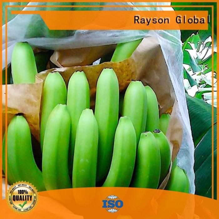 Rayson 不織布、 ruixin 、エンバイロため農業透過性風景生地 rayson 包装