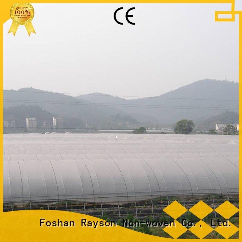 Extra breite groß landschaft stoff umweltfreundliche aus China für shop