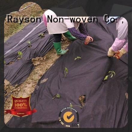 Rayson non-tissé, ruixin, enviro vêtements polypropylène paysage tissu usine prix pour les magasins