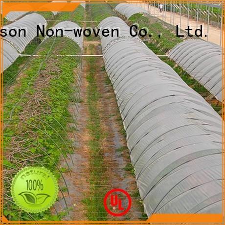 Rayson vlies, ruixin, enviro geprägt groß landschaft stoff aus China für geschäfte