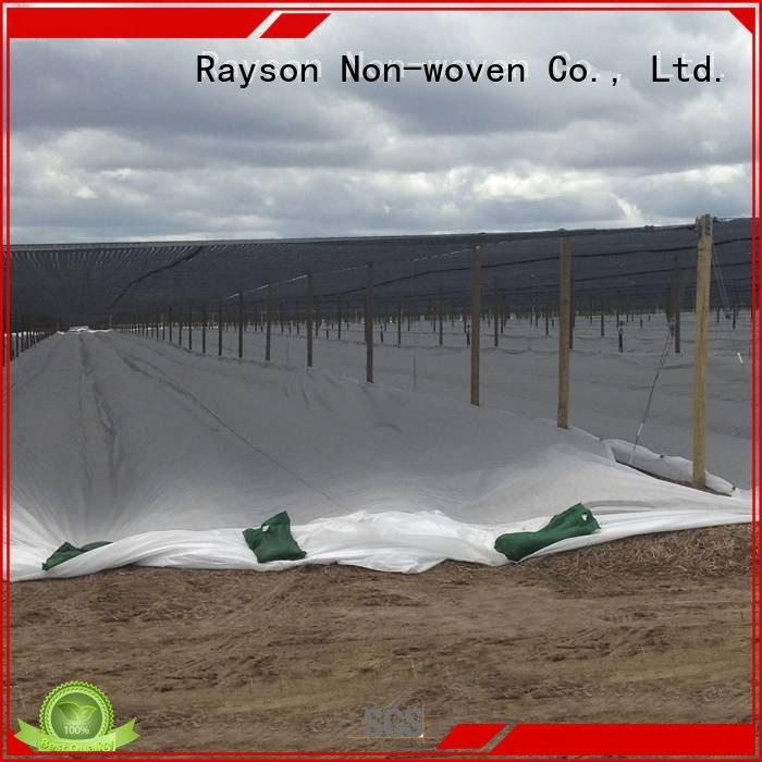 Quality rayson nonwoven,ruixin,enviro Brand weed control landscape fabric extra