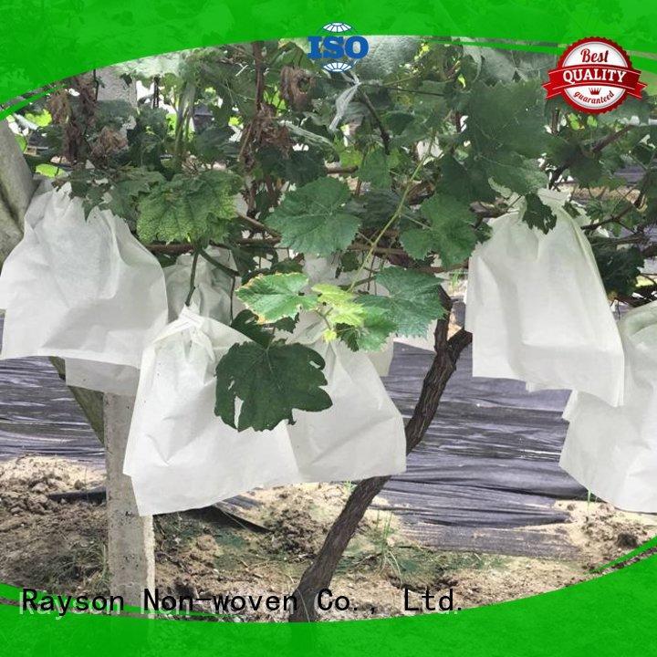 Surya resistente a los rayos UV proveedor de malezas no tejidas para tienda