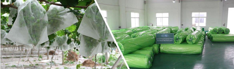 rayson nonwoven,ruixin,enviro-PP Non Woven Spunbond Cloth for Vegetable Garden Weed Barrier Garden a-1