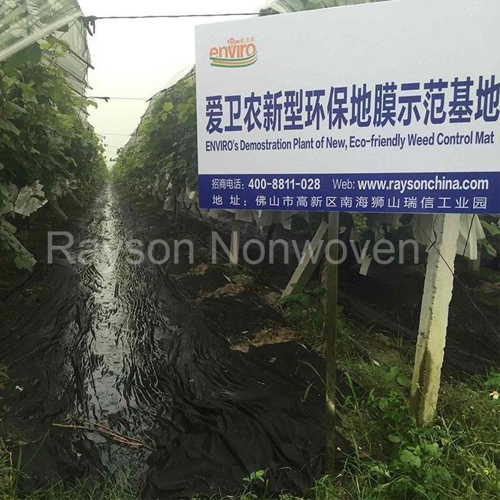 100% biodegradable flotante fila cubiertas oferta planta protección contra animales