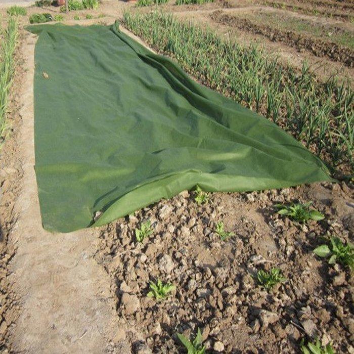 Grüne Farbe 3% UV behandelte Landwirtschaft nichtgewebtes in UAE für Schutz