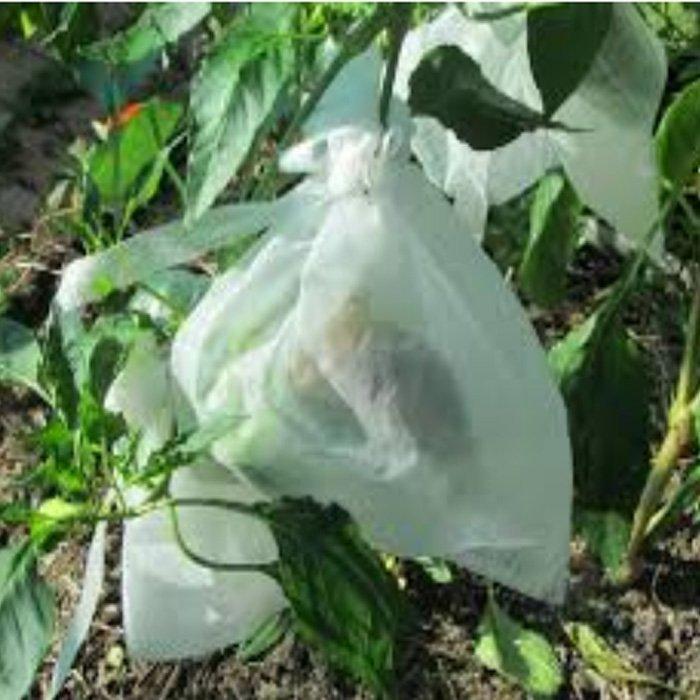 OEM Bolso no tejido disponible de la protección de la fruta del para la agricultura