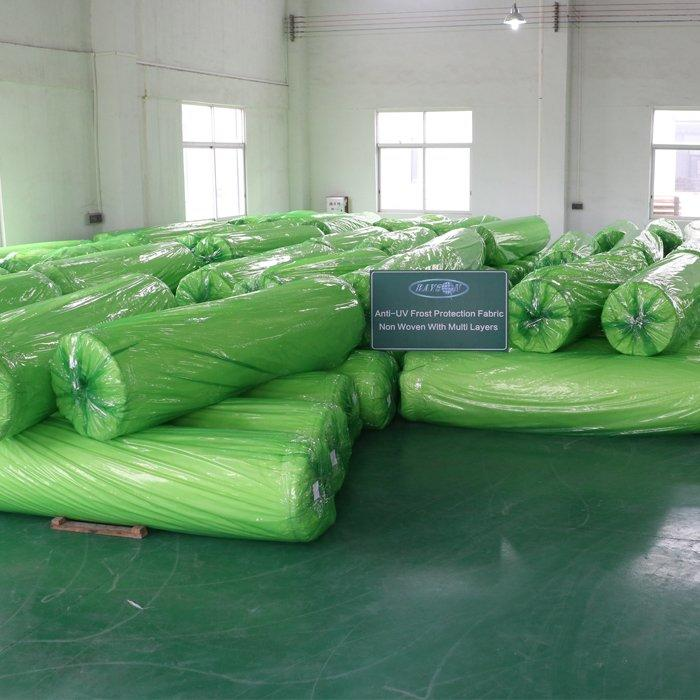 SGS cerficate PP non woven ground cover / splicing plant covers