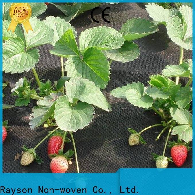 Rayonson Vlies, Ruixin, Enviro Bio für Gewächshaus angepasst