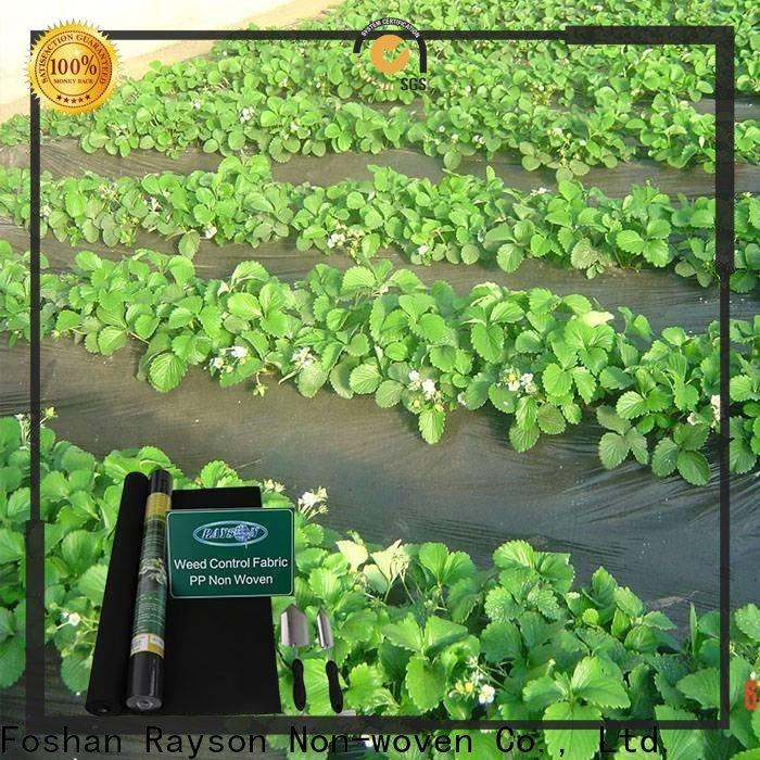 Rayons Vlies, Ruixin, Enviro Ppsb 6 Fuß breite Landschaft Stoff direkt zum Verkauf für die Abdeckung
