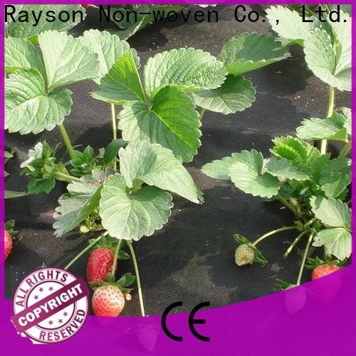tessuto non tessuto rayson, ruixin, enviro antigrass per orto in vendita direttamente per serra