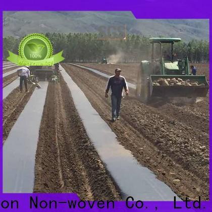 paillis de tissu de paysage stabilisé biodégradable de Chine pour l'extérieur