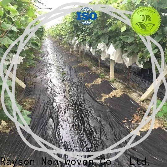 rayson nonwoven controllable green landscape fabric from China for clothing