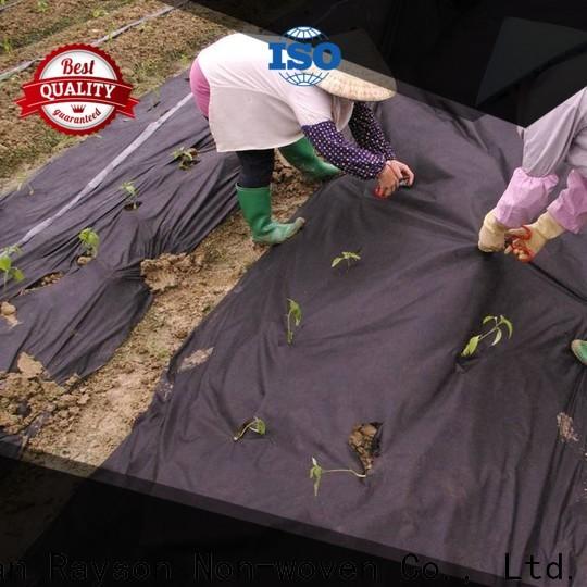Rayson Vlies Anti-Grau Landschaft Landestofflieferant für die Abdeckung