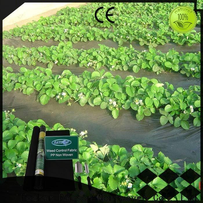 Rayons Vlies Anti-Typar-Landschaftsstoff Firma für Bauernhof