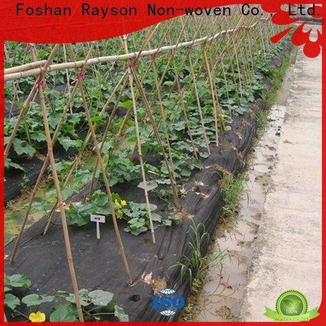 نسيج حاجز الأعشاب الضارة من Rayson لمورد حاجز الحدائق النباتية للتغطية