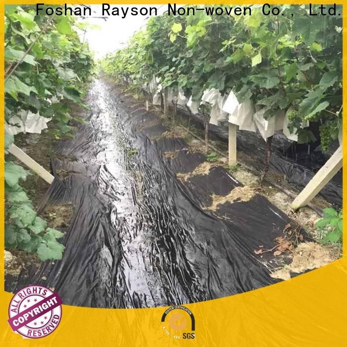 Rayson não tecido largo da tela da paisagem fábrica