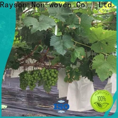 Rayson não tecido não tecido viscose fabricante