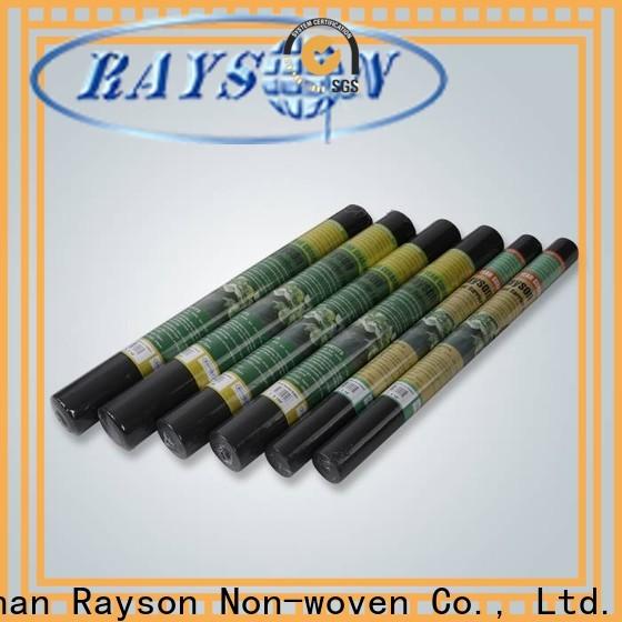 Rayson Nonwoven Rayson Wholesale Miglior tessuto del paesaggio sotto il produttore di pietra