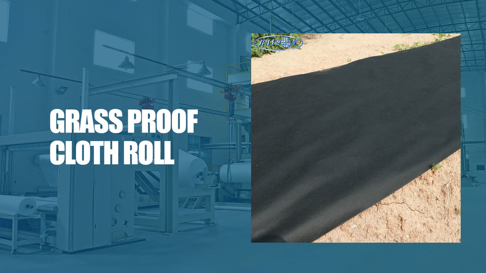 Best black non woven weed control fabric Factory Price -
