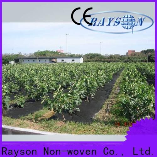 Compagnia di copertina in tessuto Giardino non tessuto Rayson