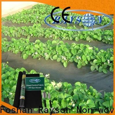 Rayson Vlies Garten Weed Stoff Preis