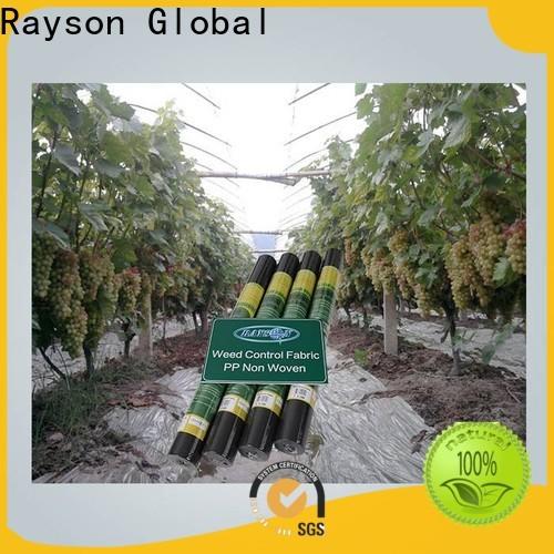 Rayson Vlies-Landschaftsstoff Lieferanten Hersteller