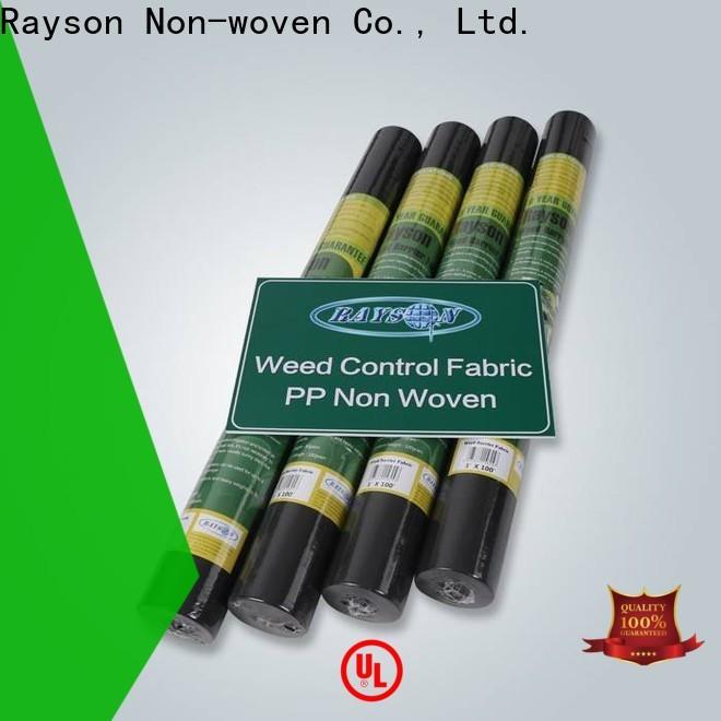 Rayson Nonwove Custom Odm Nonwove Nass Wipes Company