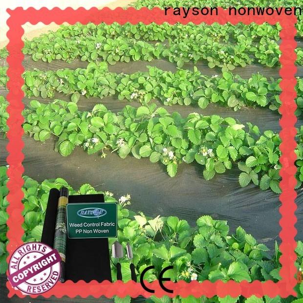 Rayson Vlies-Landschaftsgewebe Bodenabdeckung Preis