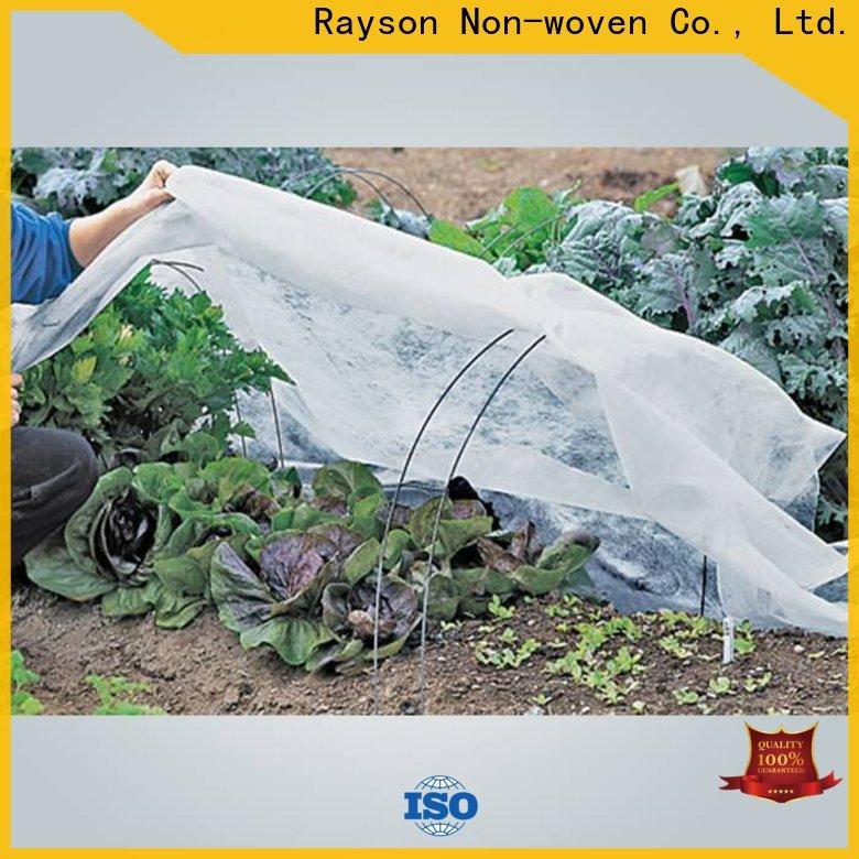 Rayson Vlies-Landschaftsstoffkostenfabrik
