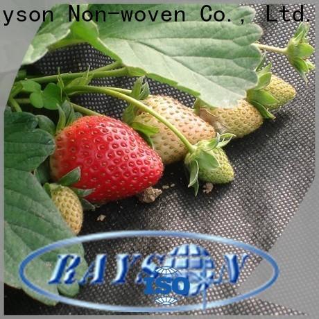Rayson ODM Best Weed Teles de control Roll en a granel