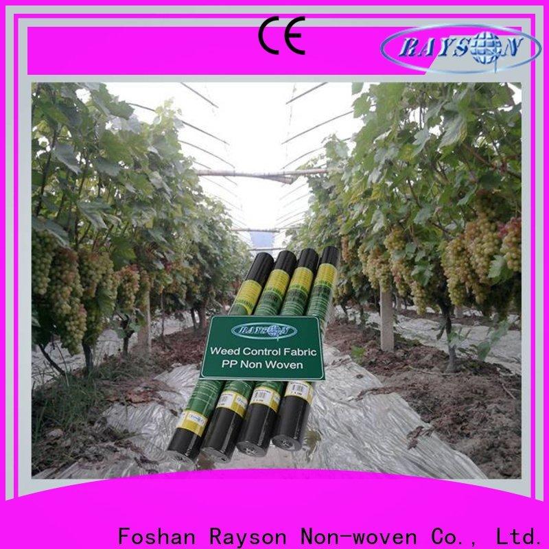 Rayson Nonwoven Rayson Nonwoven Best Landscaping Weed Proveedor de barreras