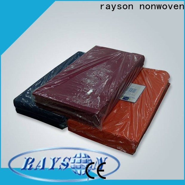 Rayson Nonwove-Einweg-WeihnachtstischCloths-Unternehmen