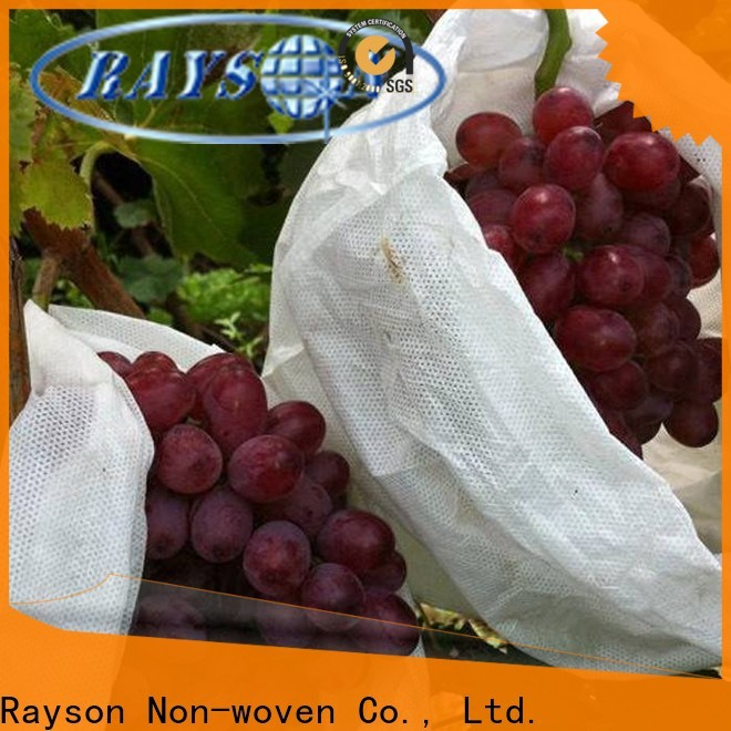 Rayson Nonwoven Bulk Paisagem Tela a granel
