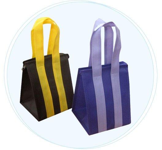 rayson nonwoven,ruixin,enviro-Custom Eco Promotional Long Handle PP non woven bag with zipper-4