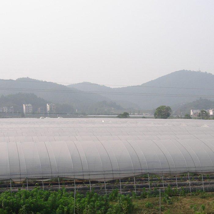 Rayson vlies, ruixin, enviro doppel landschaft stoff in gemüse garten lieferant für shop-1