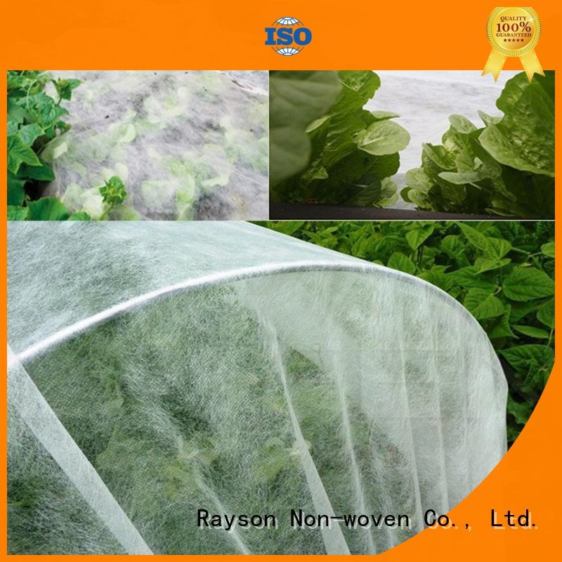 rayson nonwoven,ruixin,enviro Brand stabillized forestry protection custom landscape fabric drainage