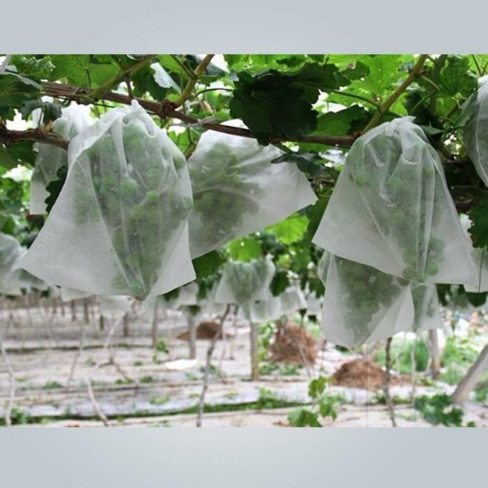 Weiße Farbe durchlässig Vlies Aromenpalette Abdeckung für Traube / Banane Schutz