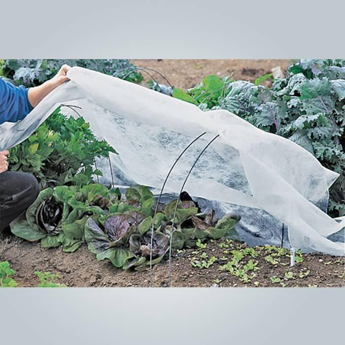 Reißfest, landwirtschaftliche Frost Schutz Stoff mit 3 % Anti-UV