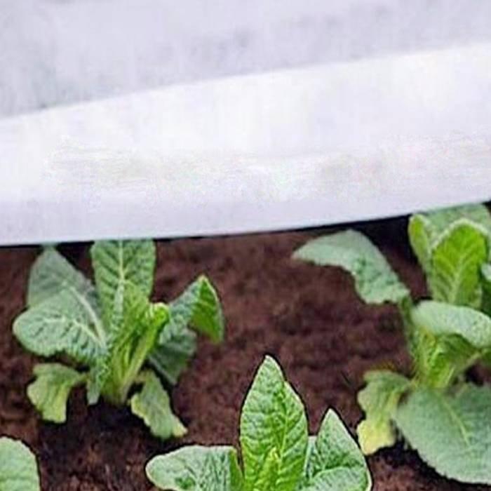 植物の害虫および病気を軽減するための白色のPP不織布