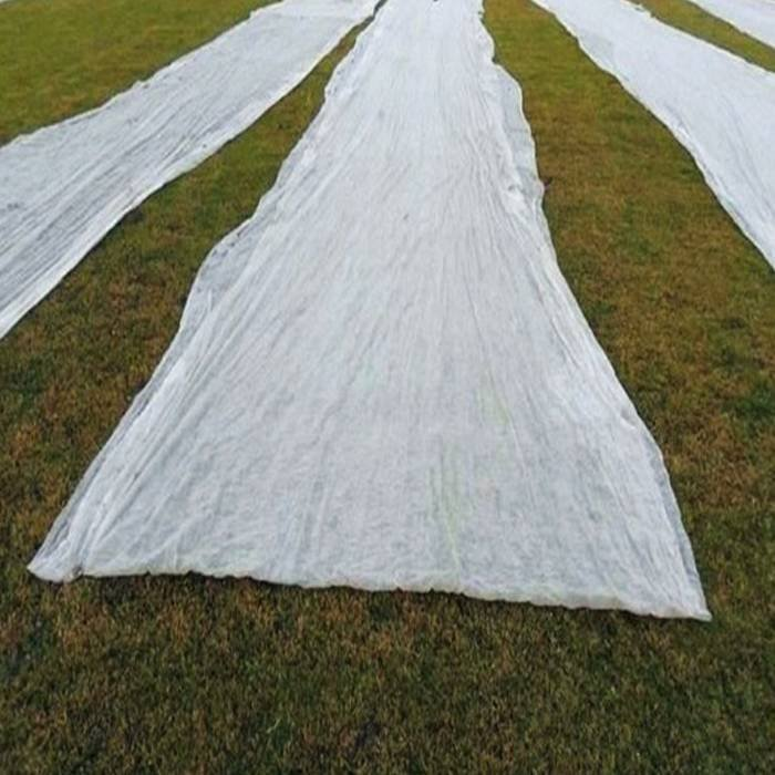 La tela no tejida de la agricultura hizo la cubierta de la planta de empalme de la protección de la helada