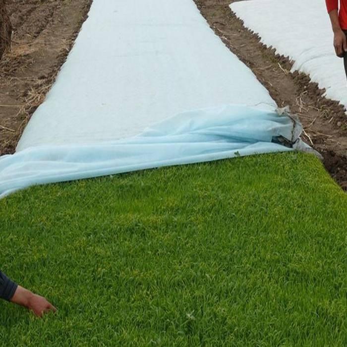 Tessuto ad alta densità di paesaggio del tessuto non tessuto di Spunbond di agricoltura UV ad alta densità