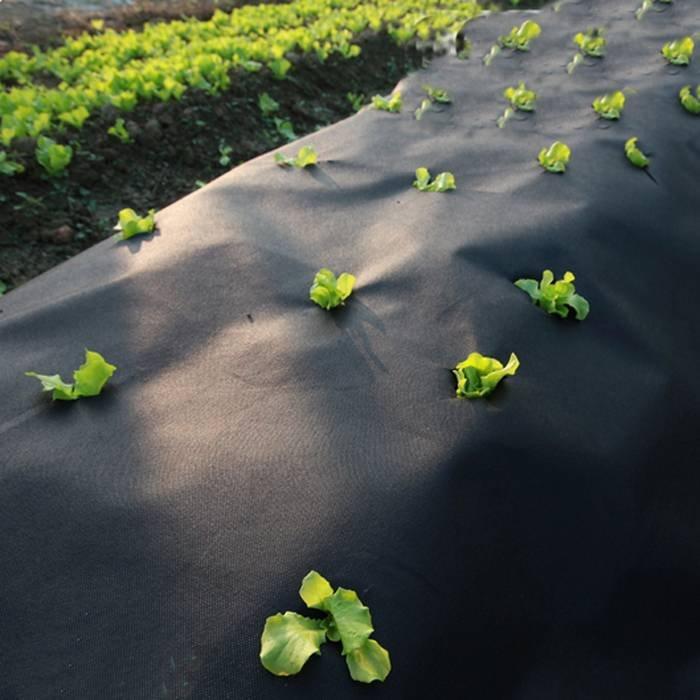أسود الهواء بيرميربل ب محبوكة النسيج الزراعة غطاء / حماية الأرض حصيرة