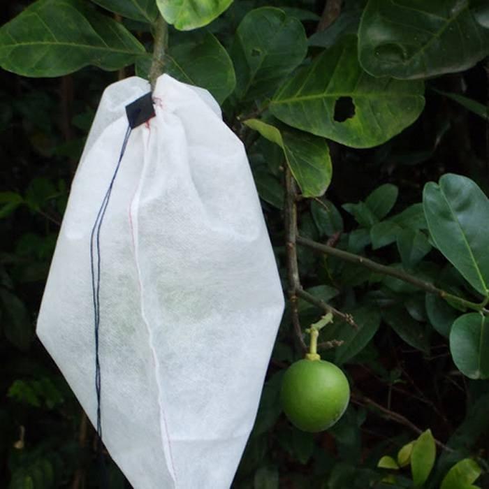 OEM Soem-wegwerfbare nichtgewebte Frucht-Schutz-Tasche für die Landwirtschaft