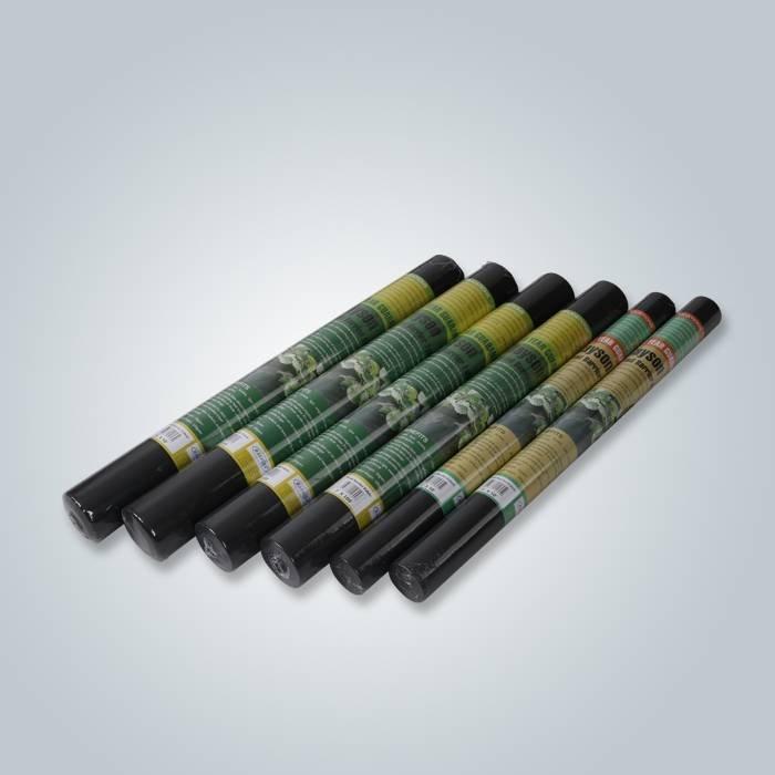 Copertura anti-UV della barriera della barriera dell'insetto di protezione dal gelo di colore nero per il giardino domestico
