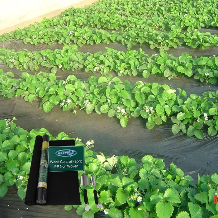 Gartenbau Vlies Unkraut Barriere Landschaft Stoff