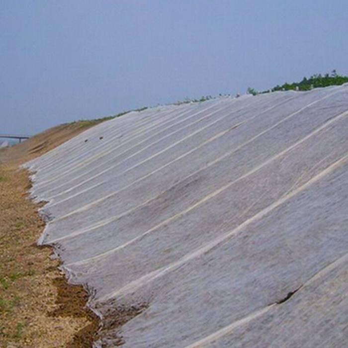 Tissu non-tissé anti-vieillissement de tissu non-tissé chaud de vente pour le paysage