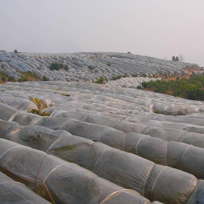 Eco freundliches pp. Spunbond nichtgewebter mit Anti-UV fertig für das Schützen des Gemüses